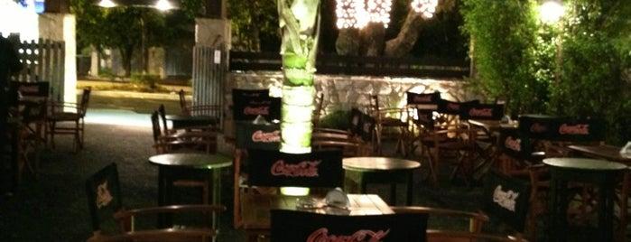 Alamo pizzeria is one of Pizzerias.