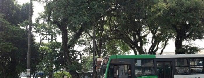 Largo do Limão is one of Limão.