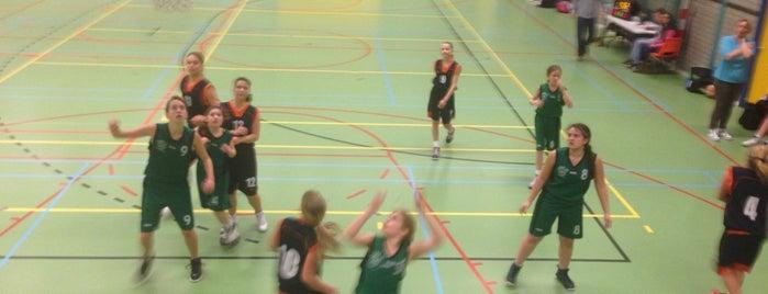 Oosterbliek Sporthal is one of Sporthallen NBB Promotiedivisie 2011/2012.