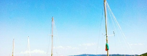 Marina is one of Locais obrigatórios em Viana do Castelo.