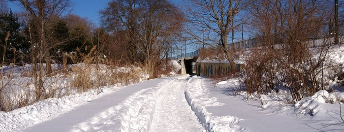 Neponset Greenway is one of Landmarks.