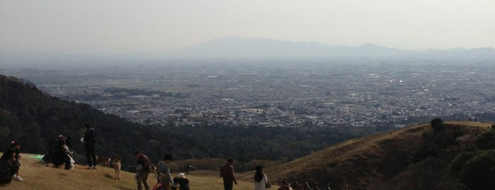 Mt. Wakakusa is one of Great outdoor in NARA.
