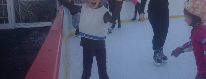McCarren Ice Rink is one of Best Spots for Kids - NYC.