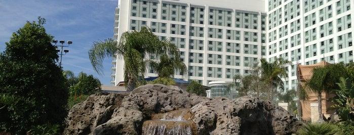 Hilton Orlando is one of Hotel / Casino.