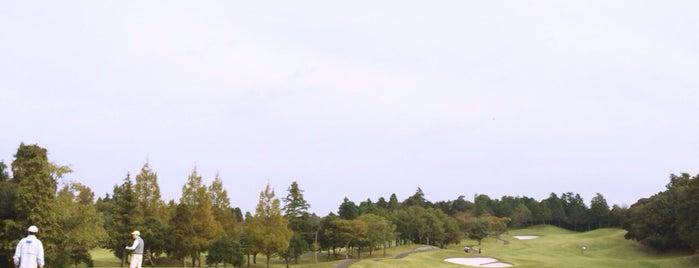 美浦ゴルフ倶楽部 is one of Top picks for Golf Courses.