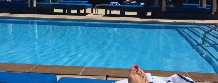 DayDream Pool Club is one of Best Vegas Pool Parties.