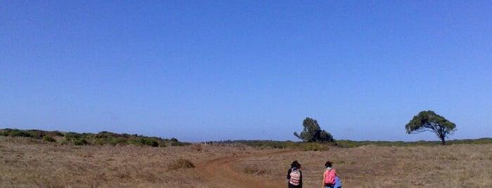 Isla Santa María is one of #Coronel.