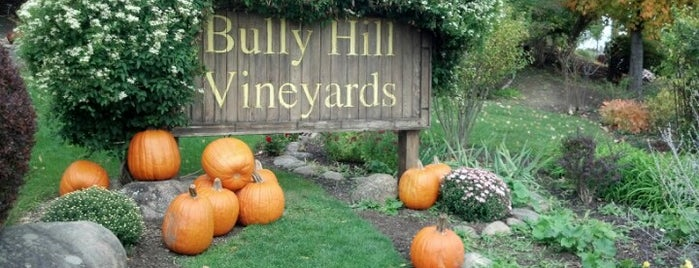Bully Hill Vineyards is one of Top picks for Wineries.