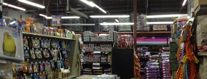 Global Pet Food Outlet is one of Favorite places.