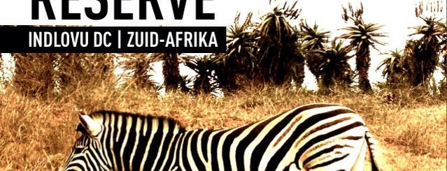 Tala Game Reserve is one of My Bucket List.