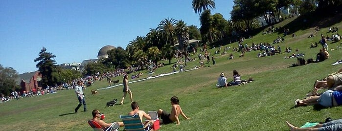 Mission Dolores Park is one of A Dog's San Francisco.