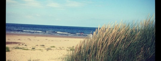 Holkham Beach is one of 36 Hours in... North Norfolk.