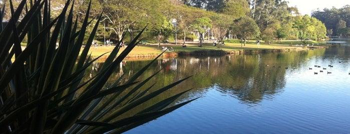 Parque Ibirapuera is one of Locais e Estabelecimentos.