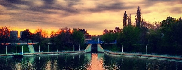 Parcul Herăstrău is one of Bucharest <3.