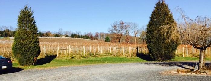 Big Creek Vineyard is one of Local stuff to do.
