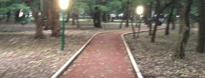 Parque Gandhi is one of Lugares para correr.