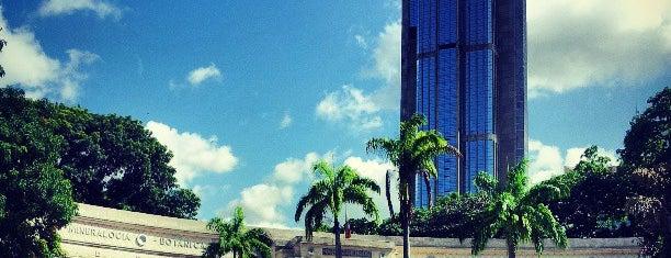Museo de Ciencias Naturales de Caracas is one of los mejores edificios de caracas.