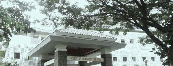 Fakultas Kedokteran Hewan is one of UGM.