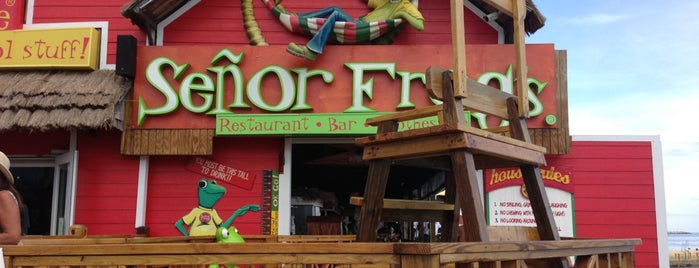 Señor Frog's is one of ?8.