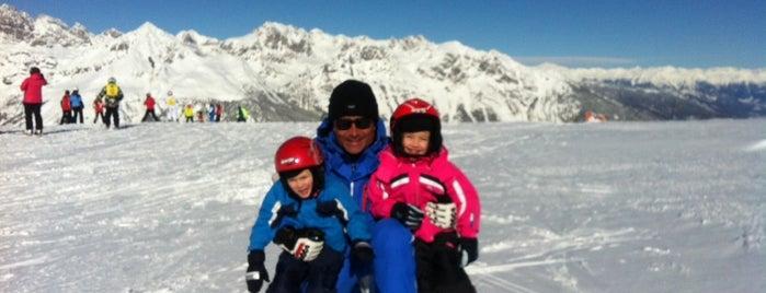 Scuola Sci Paganella Ski Style is one of Sport.