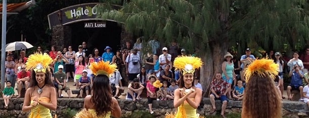 Polynesian Cultural Center is one of I've been here.