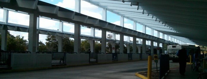 Broward Central Terminal is one of My favorite places :).