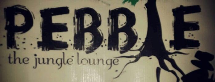Pebble is one of TODO - Bangalore.