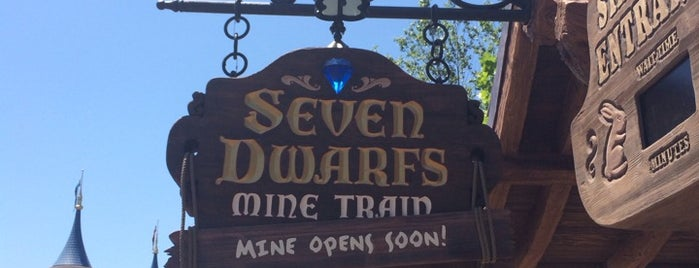 Seven Dwarfs Mine Train is one of Roller Coaster Mania.