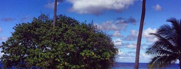 Renaissance St. Croix Carambola Beach Resort & Spa is one of Ren.