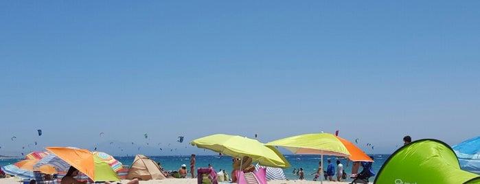 Playa Punta Paloma is one of Andalucia.