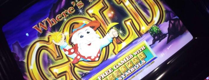 Dunedin Casino is one of CASINOS.
