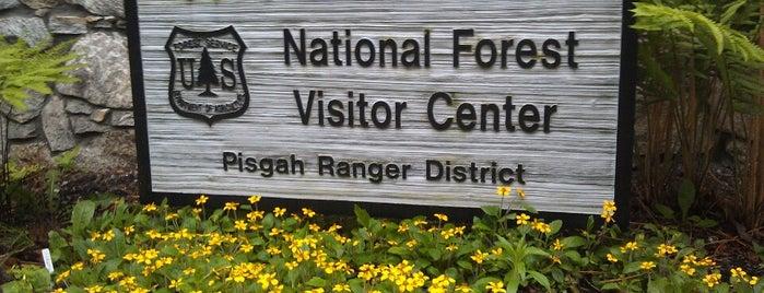 Pisgah Ranger District is one of Kel's Queendome ;-).