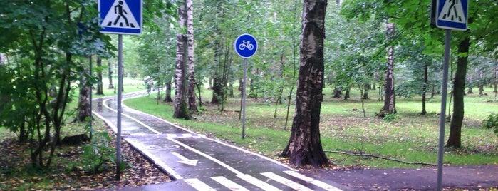 """Велосипедная Дорожка """"Олимпиец"""" is one of Лобня."""