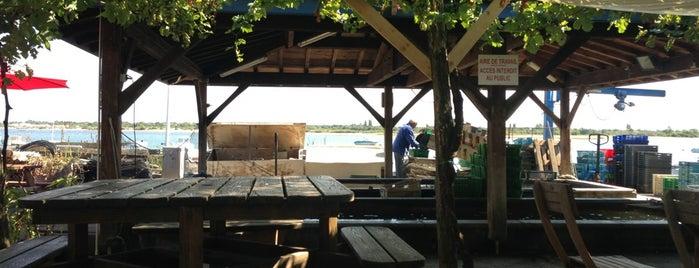 Arcachon - La cabane de l aiguillon ...