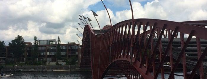 Pythonbrug of Hoge Brug (Brug 1998) is one of Bridges in the Netherlands.
