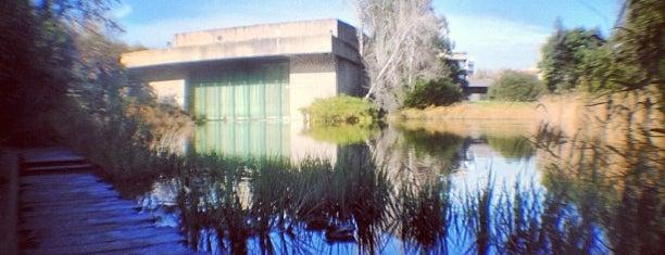 Jardim da Fundação Calouste Gulbenkian is one of Passear a pé.