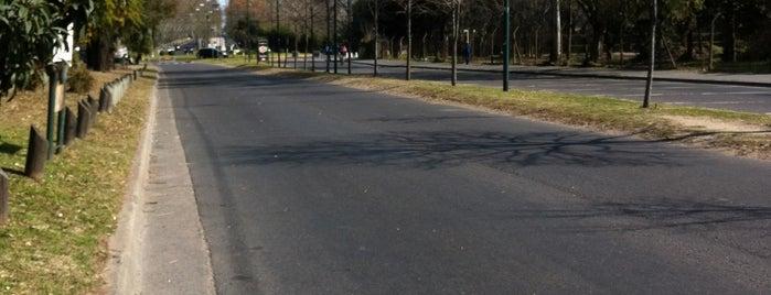 Paseo De Bicicletas is one of AL AIRE LIBRE!.