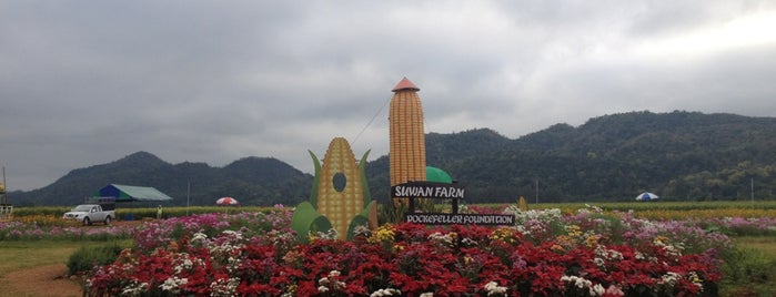 Suwan Farm is one of Favorite Great Outdoors.