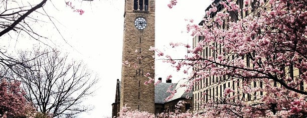 Cornell University is one of Want to visit.