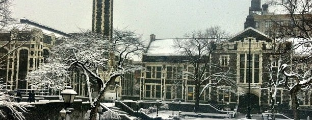 The City College of New York is one of NYC Hurricane Evacuation Centers.