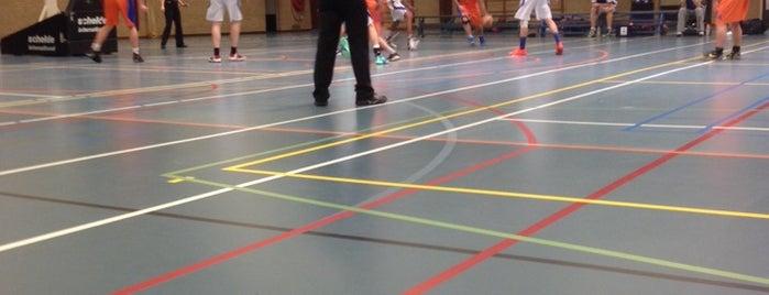 Sporthal Eckart is one of Sporthallen NBB Promotiedivisie 2011/2012.