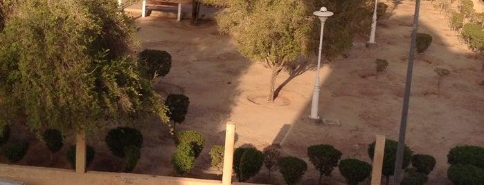 الحديقة الوردية is one of حمد.