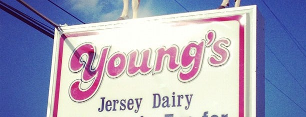 Young's Jersey Dairy is one of Great Ohio Food Destinations!.