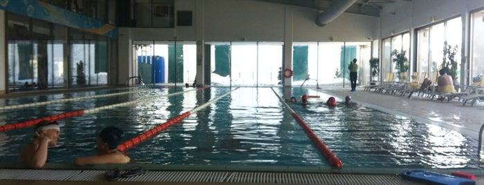 Piscine for Club piscine canada