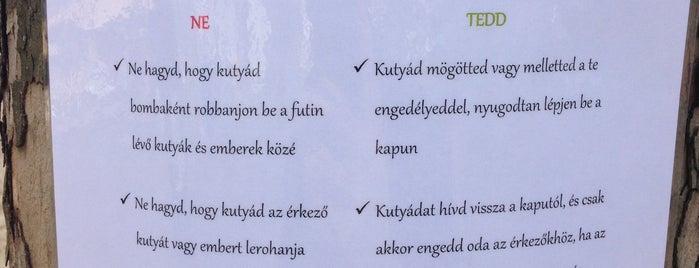 Kutyafuttató (Kosárka sétány) is one of 1.