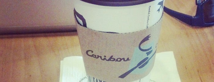 Caribou Coffee is one of Rosedale malk.