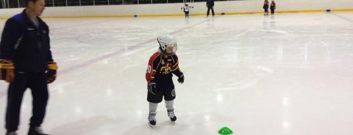 Junior icehockey arenas