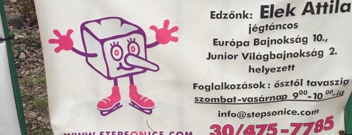 Ferencvárosi Jégcsarnok is one of 1.