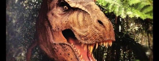 Jurassic Park is one of Florida Rides 2012.