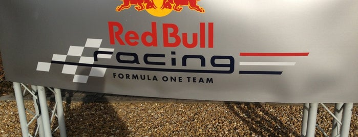 Red Bull Racing Ltd is one of ¿Got Wiiings?.